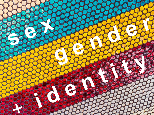 Sex, Gender and Identity